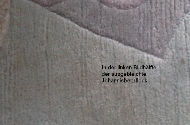 Teppichfleck-entfernen